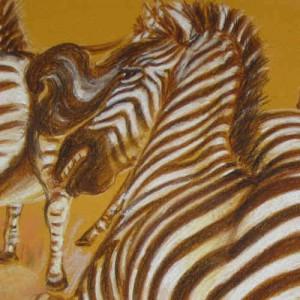 Kapitola 5 – Konflikt se zebrami